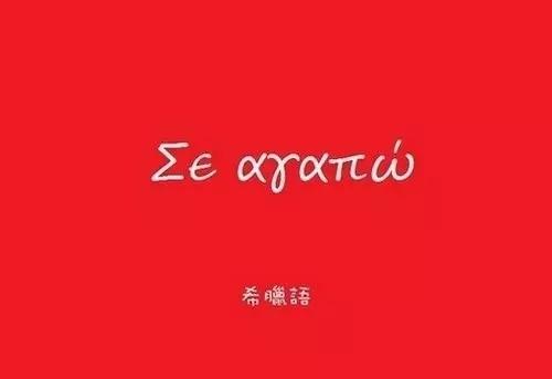 世界上最难学的十大语言正在互相sibi!